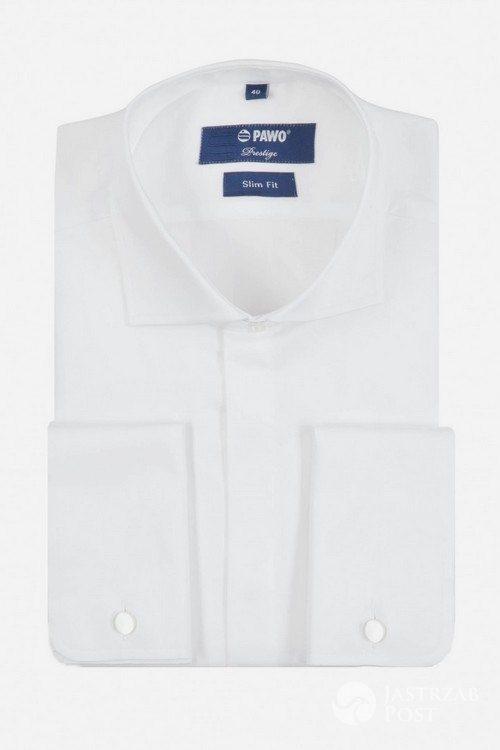 Koszula, Pawo, 239,40 pln