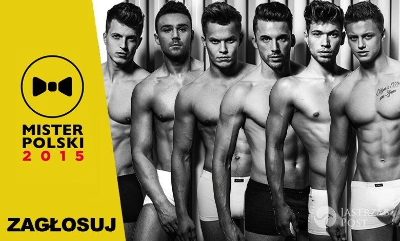 Mister Polski 2015 kandydaci - oficjalne głosowanie