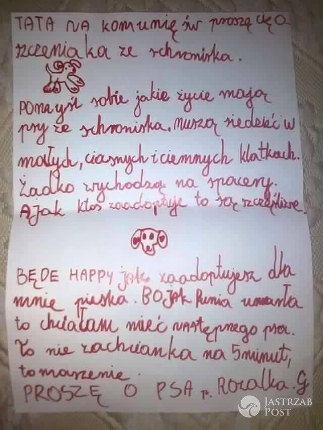 Marcin Dorociński pomoże małej dziewczynce zaadoptować psa ze schroniska