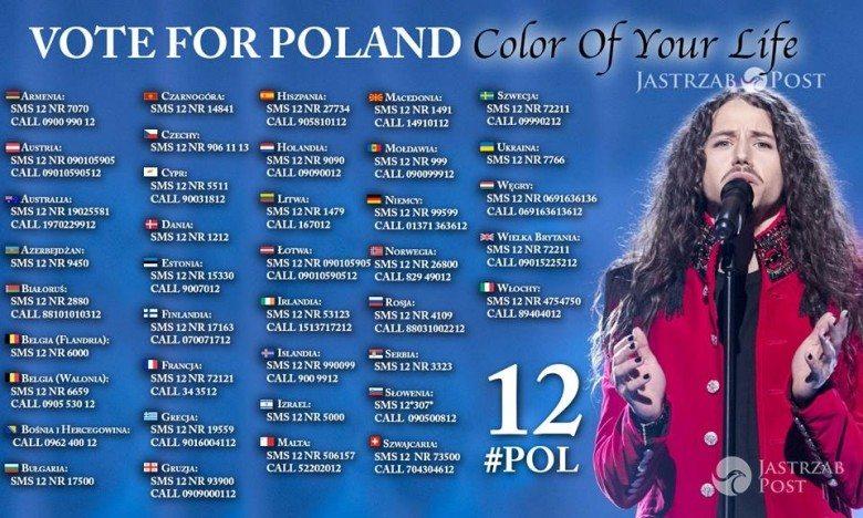 Jak zagłosować na Michała Szpaka? Polska w finale Eurowizji, numery sms