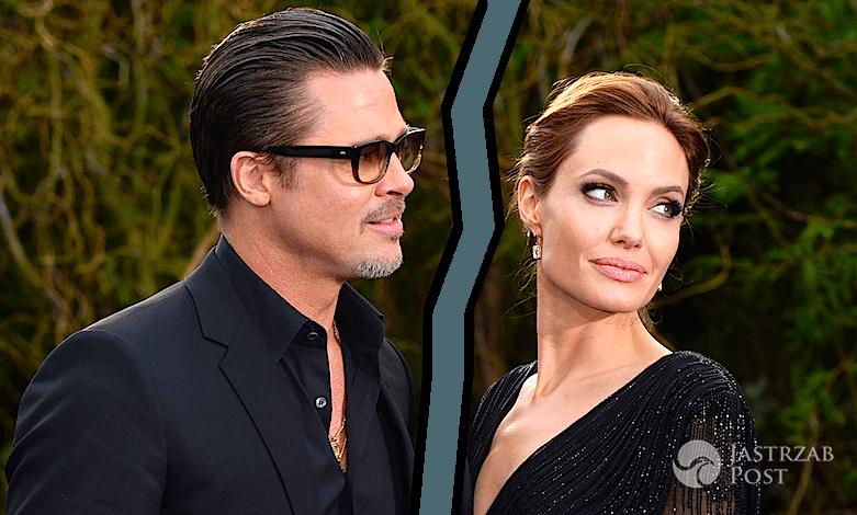 Brad Pitt i Marion Cotillard mają romans! Zdradził Angelinę Jolie!