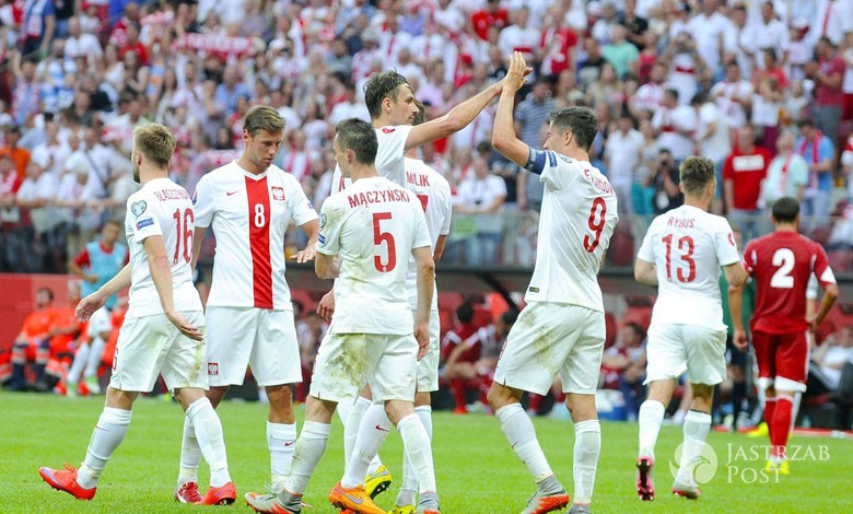 Kibic na murawie w meczu Polska-Portugalia na EURO 2016