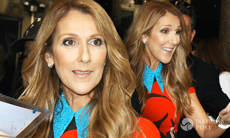 Celine Dion paparazzi 2016