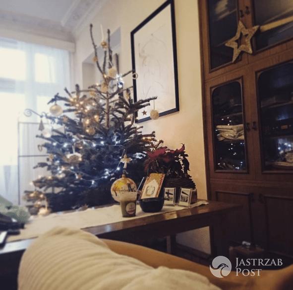 Choinka Anny Dec 2016