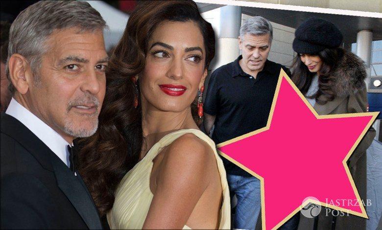 George i Amal Clooney w ciąży na lotnisku