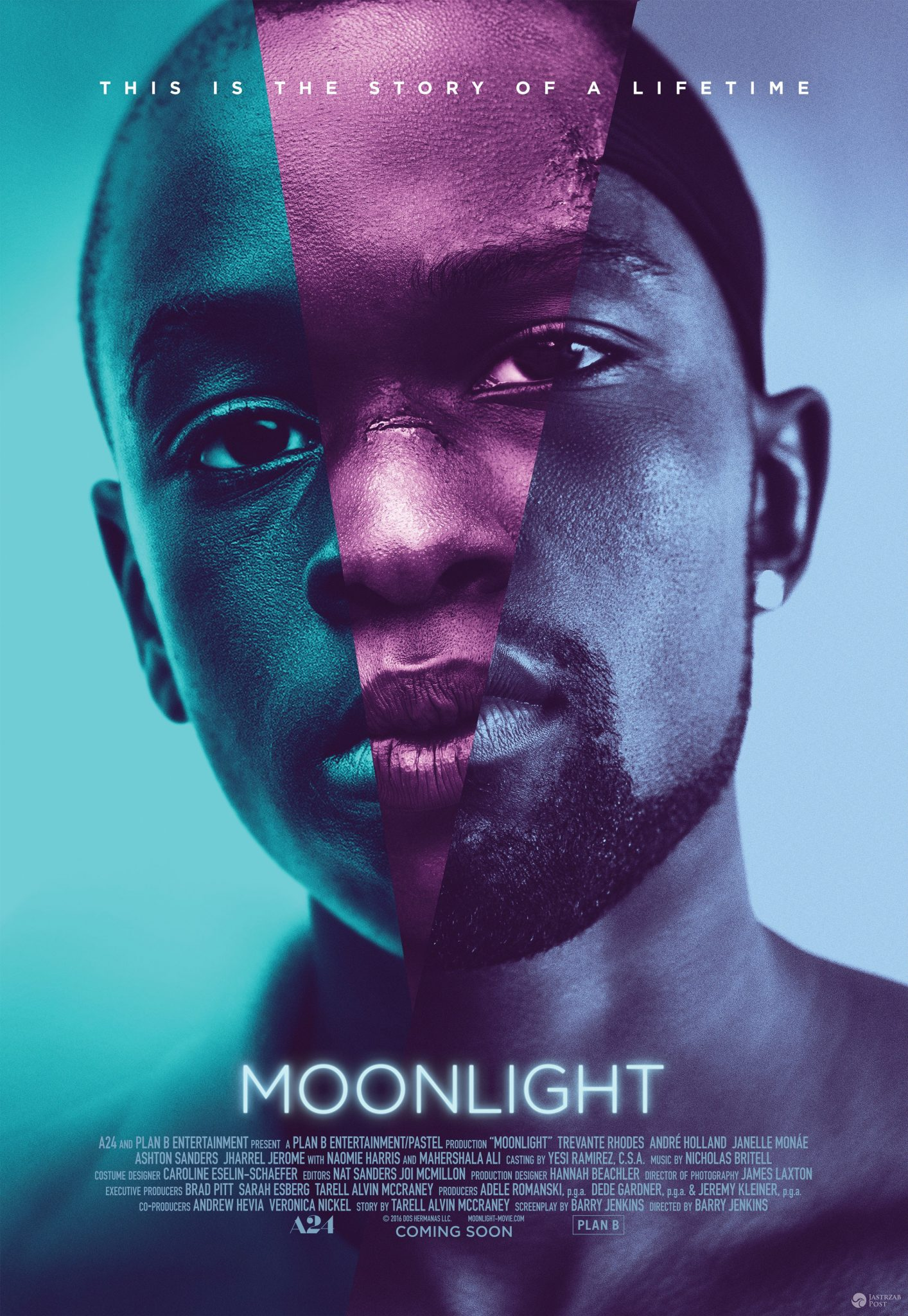 "Plakat filmu ""Moonlight"""