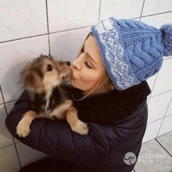 Joanna Krupa poszukuje chętnych do programu Misja Pies