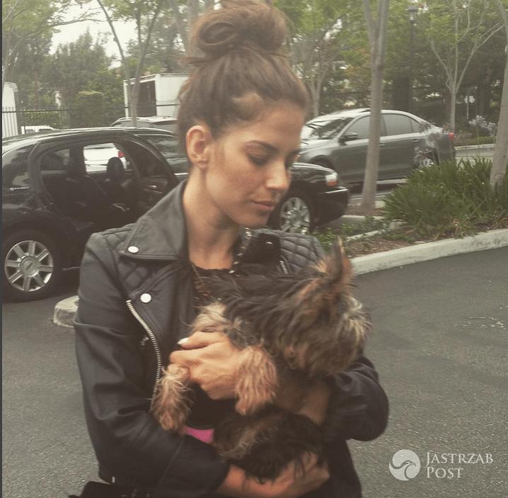 Taylor piesek Weroniki Rosati - Instagram