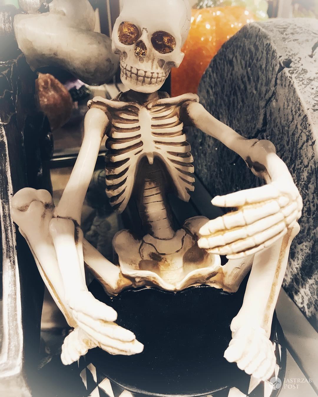 Katarzyna Zielińska przygotowuje się do Halloween