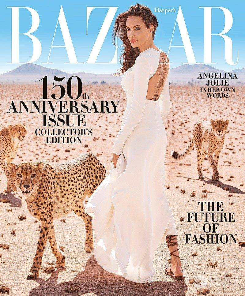 Angelina Jolie na okładce Harper's Bazaar