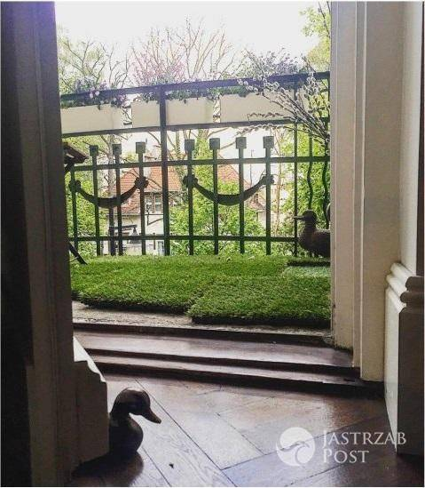 Marta Kaczyńska pokazała wnętrza swojego mieszkania - Odziedziczyła je po rodzicach