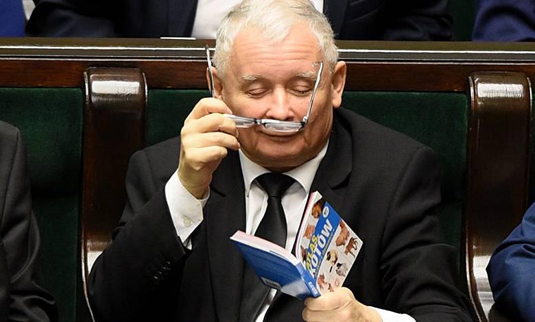 Partia Jarosława Kaczyńskiego opatentowała przepis na żonę