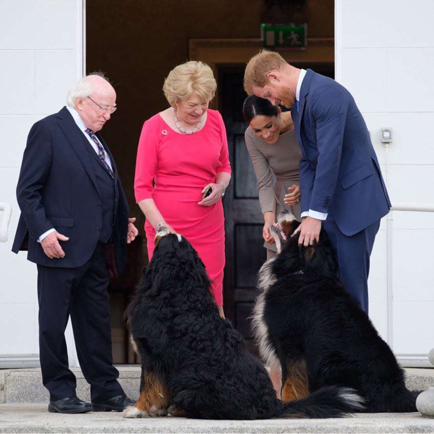 Zdjęcie (26) Książę Karol nie jest ojcem księcia Harry'ego? Plotki krążą od lat, ale to jedno zdjęcie rozwiewa wszelkie wątpliwości!