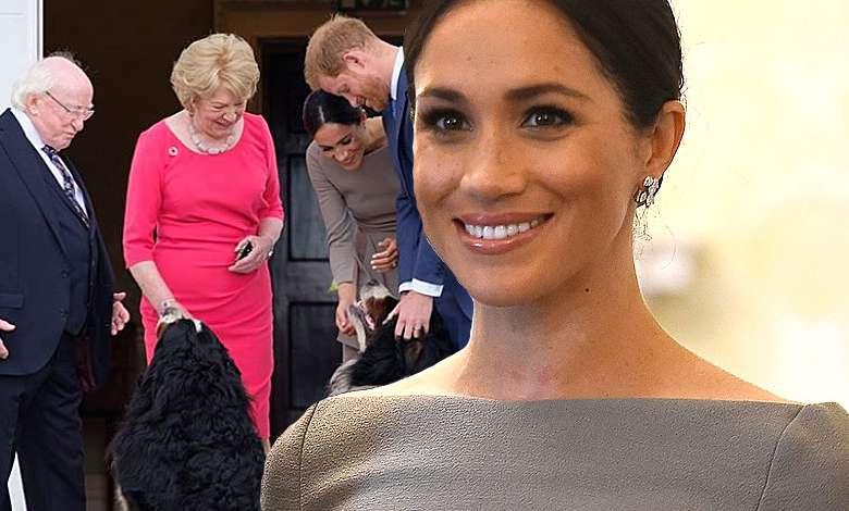 Meghan Markle i książę Harry na spotkaniu z prezydentem Irlandii