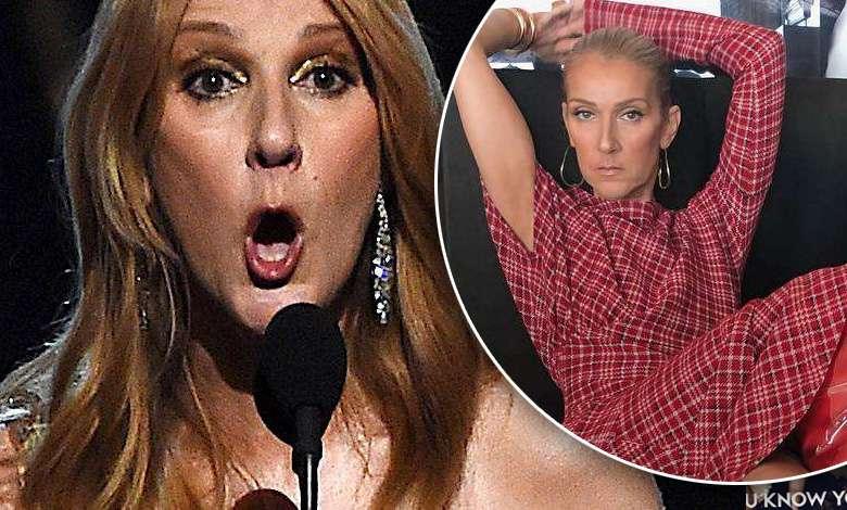 Celine Dion w kozakach