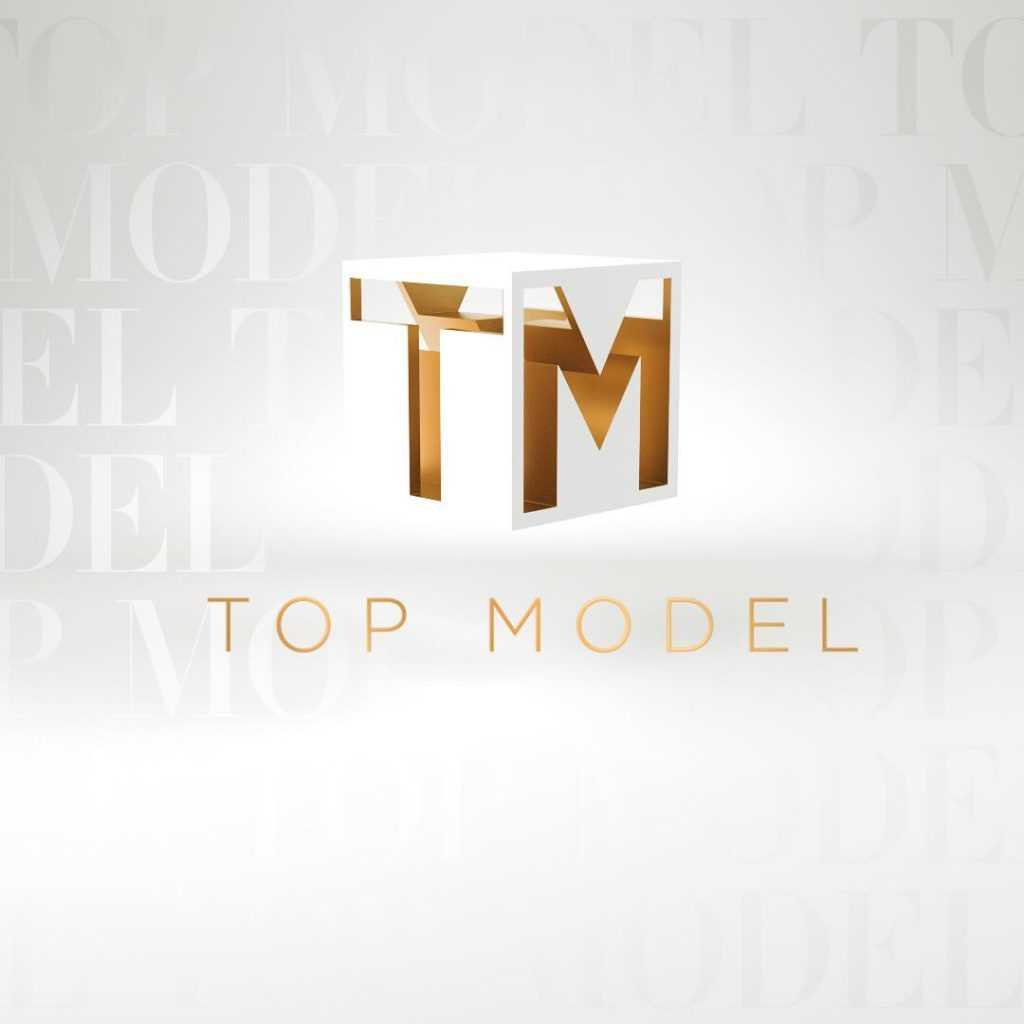 Top Model 8 - nowe logo