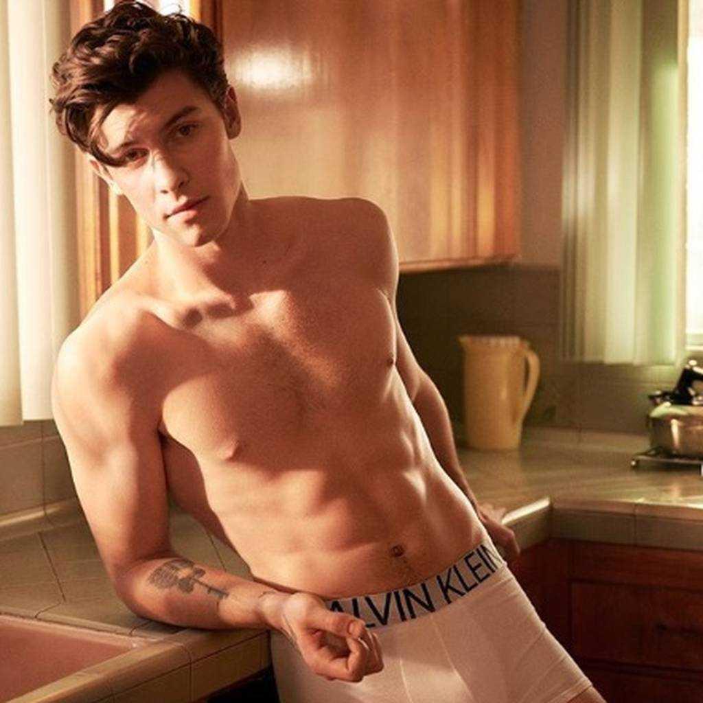 Jakiej orientacji seksualnej jest Shawn Mendes? Czy jest gejem?