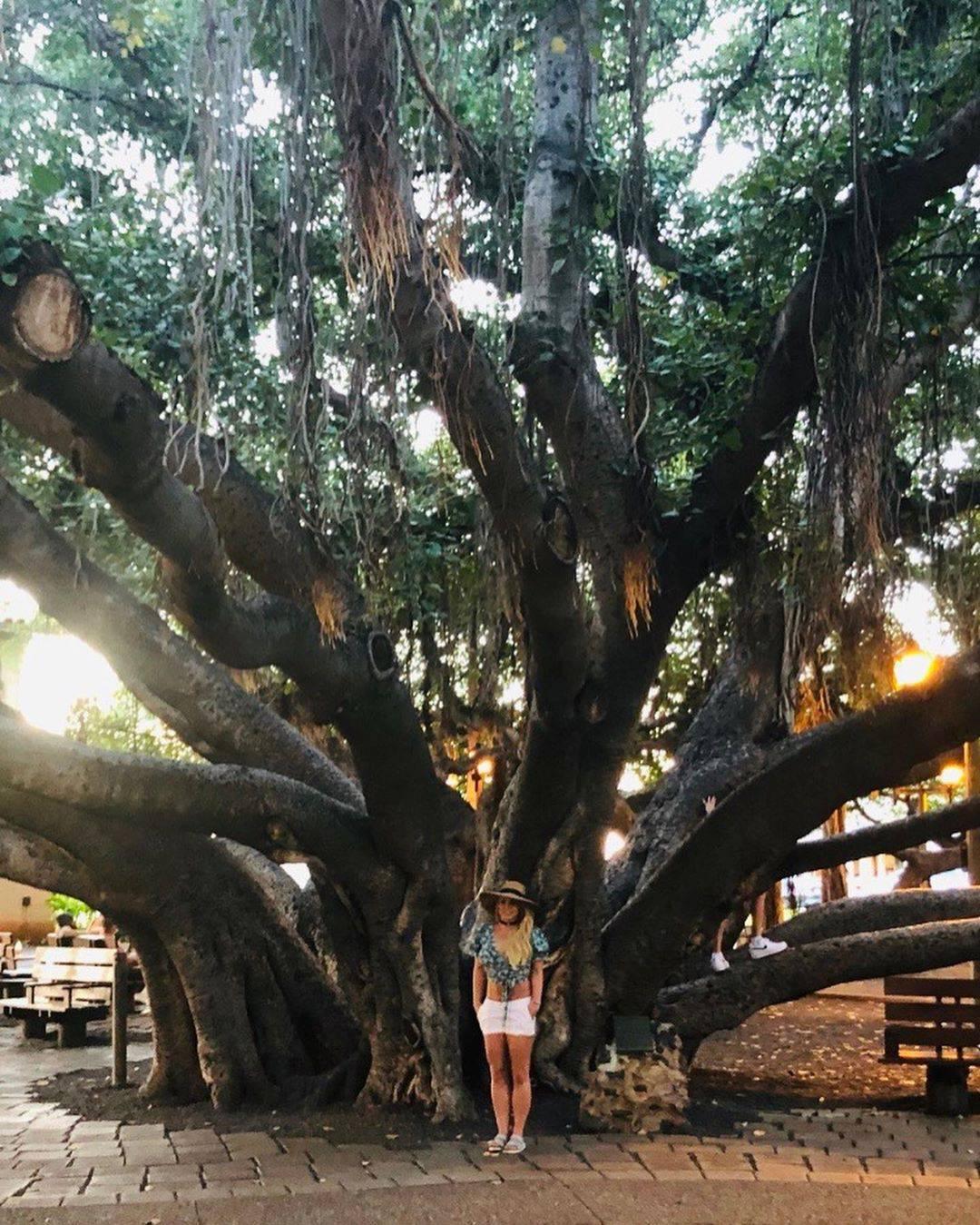 Britney Spears pozuje pod drzewem, Instagram