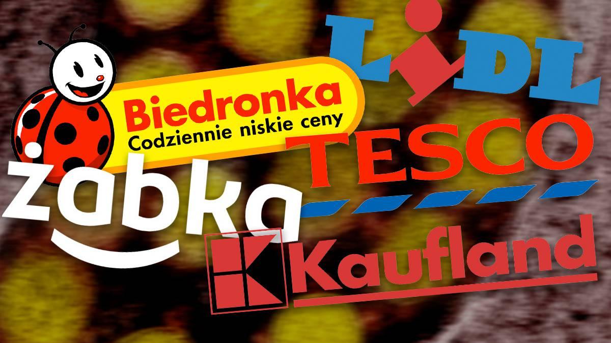 Lidl, Biedronka, Żabka, Tesco