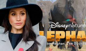 Meghan Markle – Elephant film