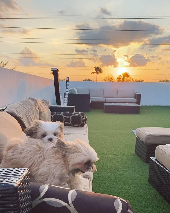 Sandra Kubicka – dom w Miami