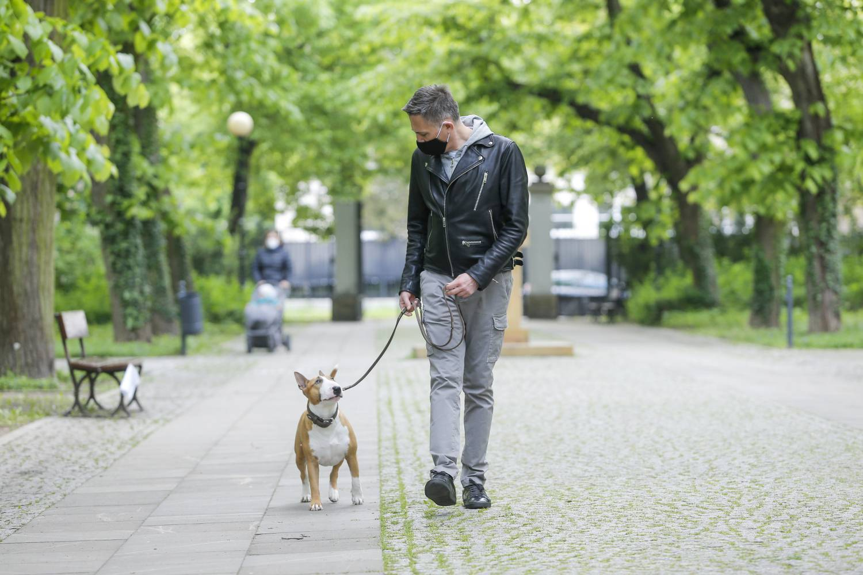Krzysztof Ibisz na spacerze z psem
