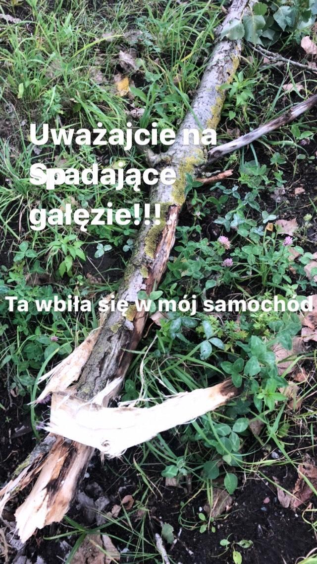 Małgorzata Ostrowska-Królikowska cudem uniknęła wypadku