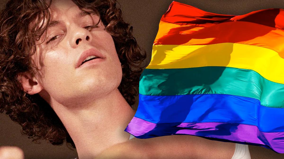 Shawn Mendes jest gejem?