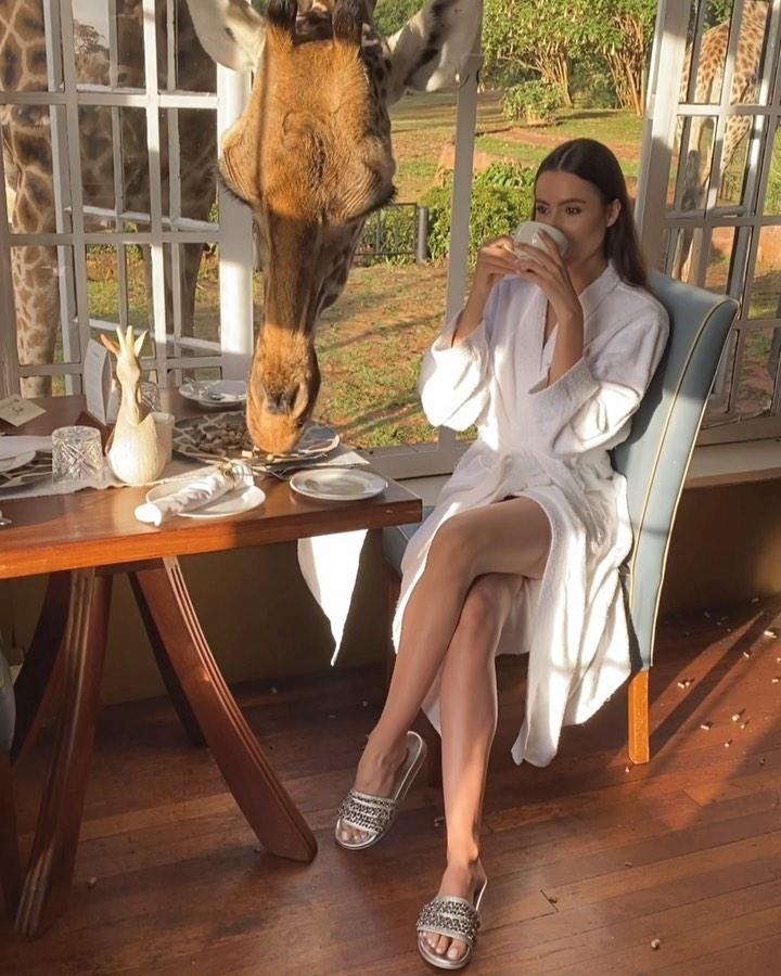 Zdjęcie (1) Żona Krychowiaka spokojnie jadła śniadanie, aż tu nagle wydarzyła się niezwykła rzecz. Wszystko nagrała. Scena jak z filmu